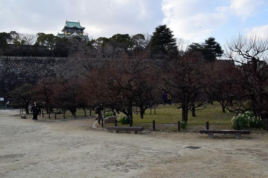 大阪城・真冬18 (11)