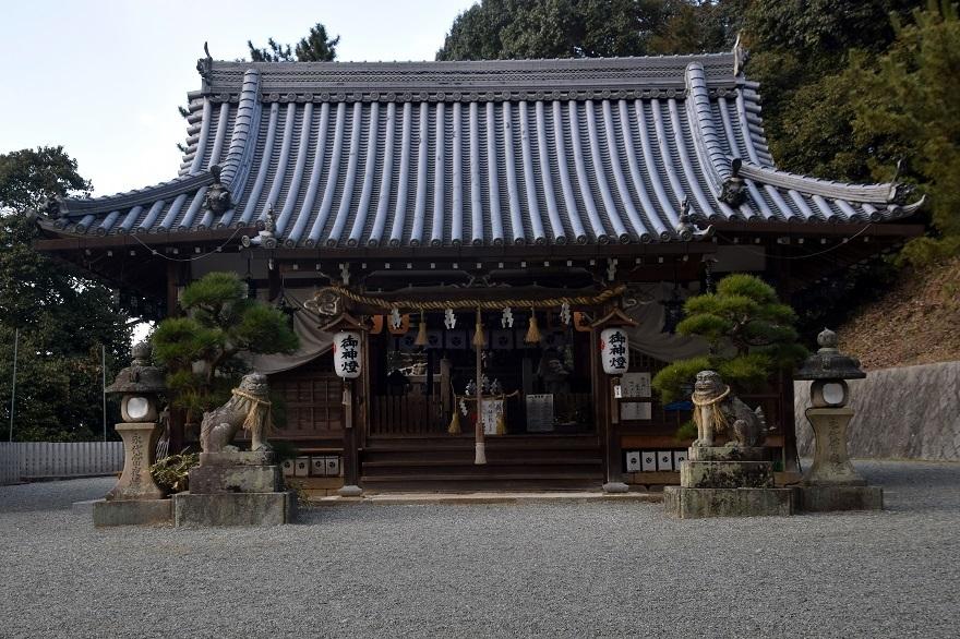 玉祖神社水仙 (20)