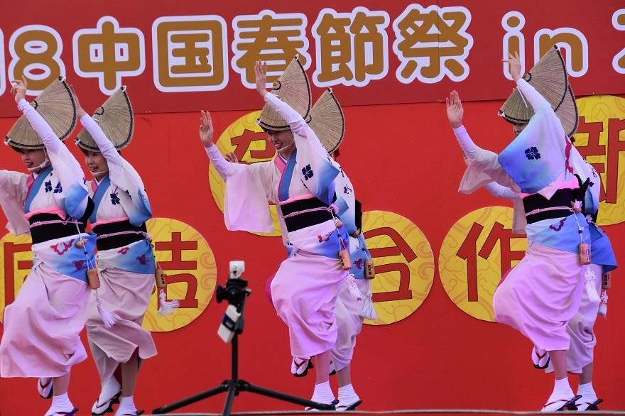 天王寺・阿波踊り (6)