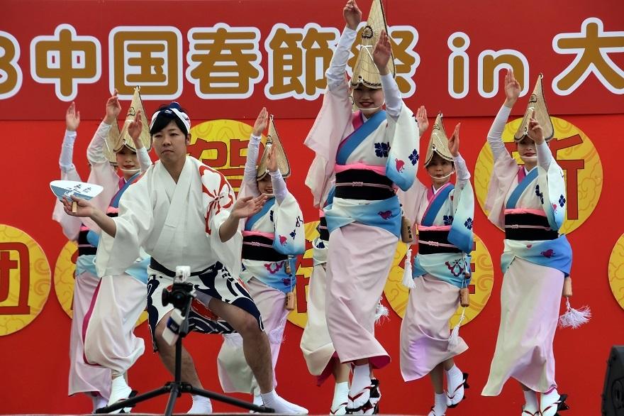 天王寺・阿波踊り (16)