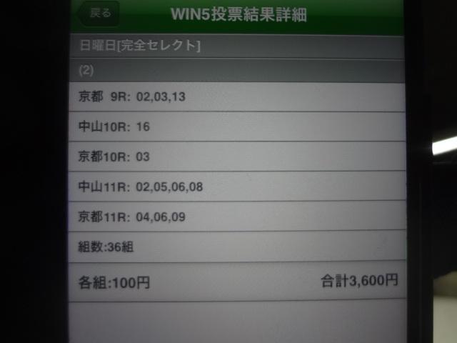 DSC03666.jpg