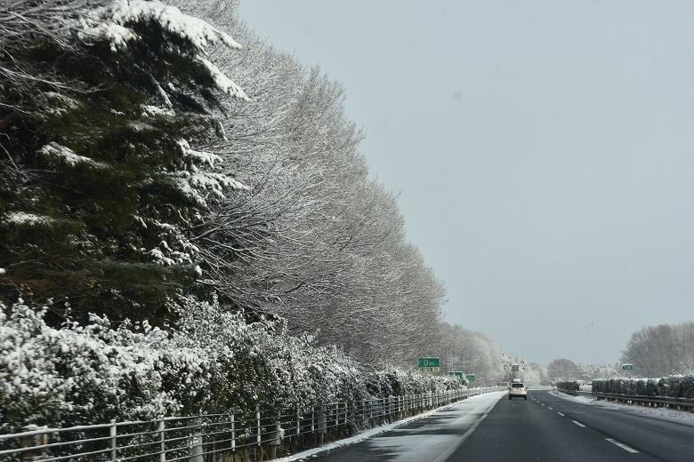 009 雪景色