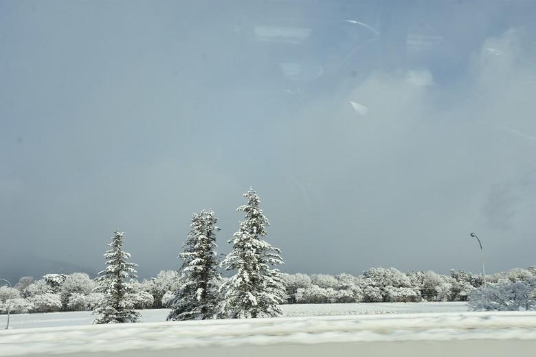 011 雪景色