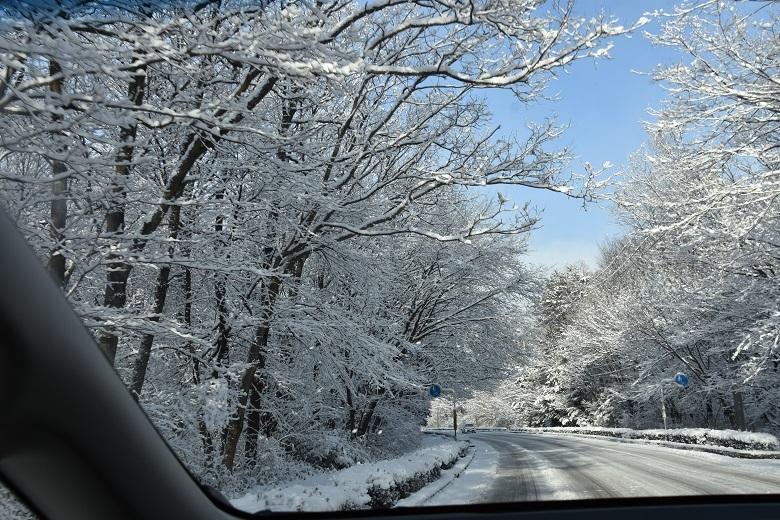 016 雪景色