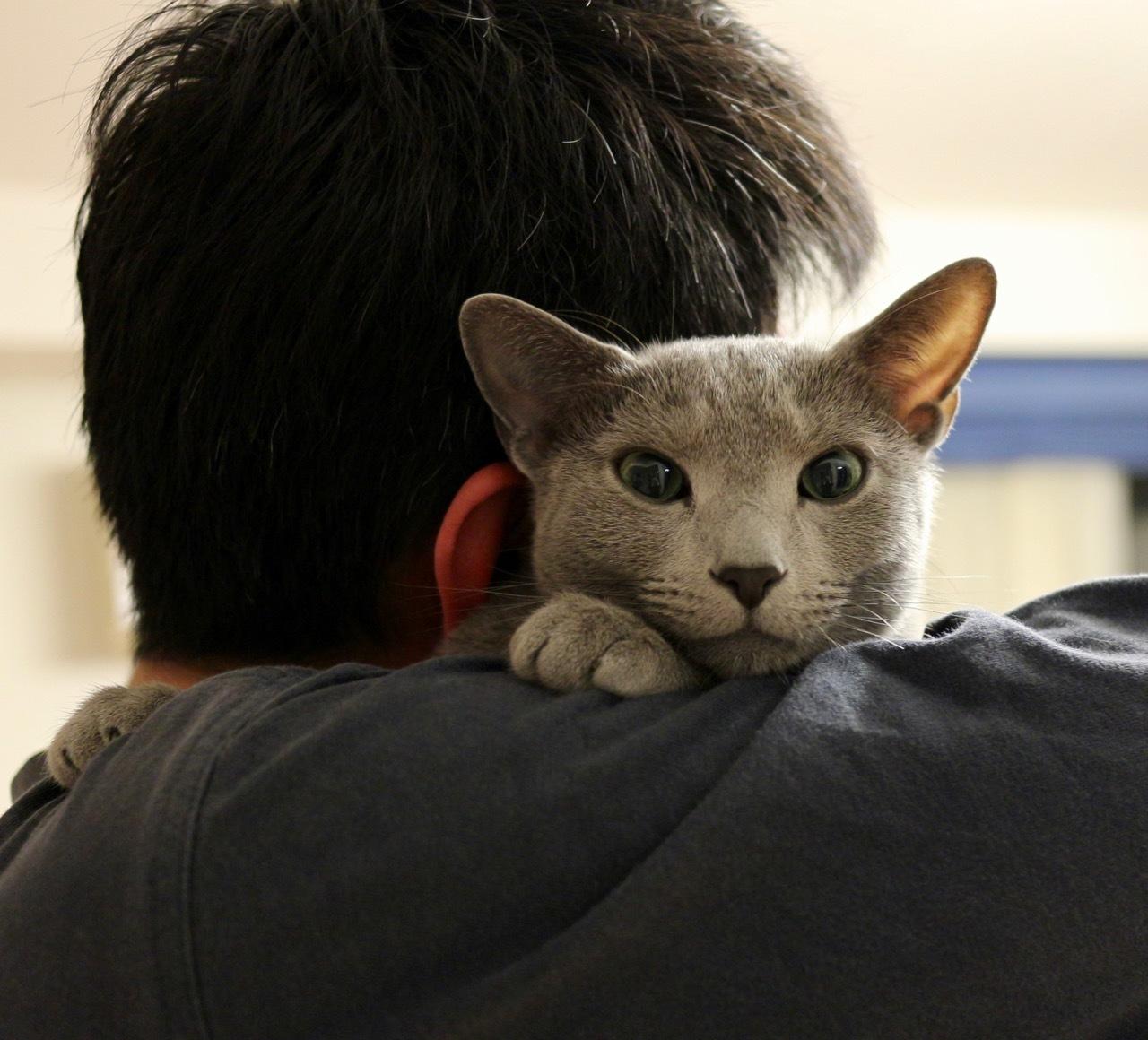 テオ抱っこ