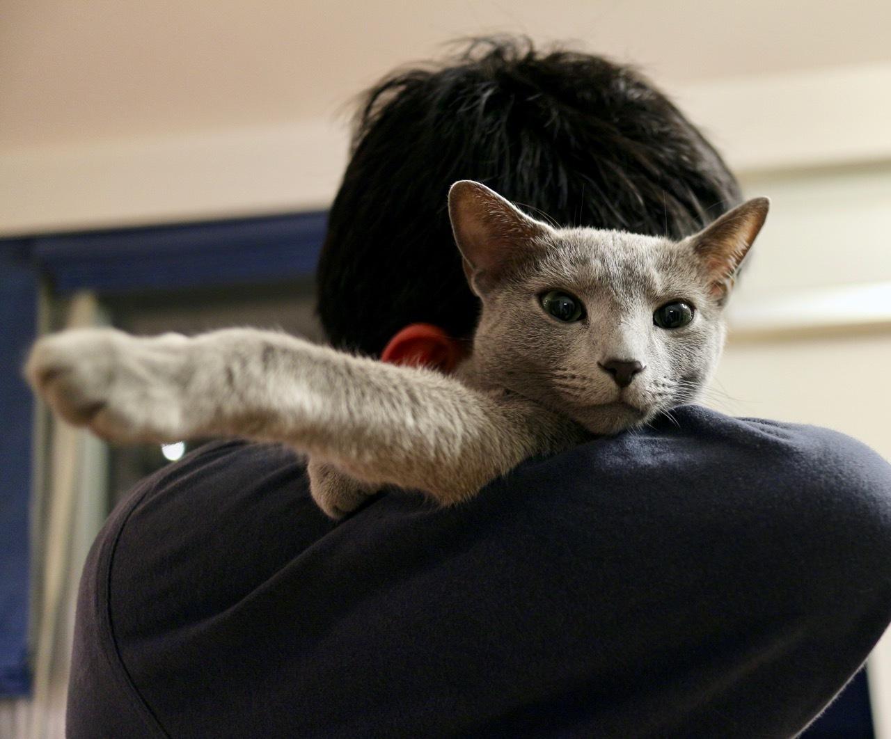 テオ抱っこ2