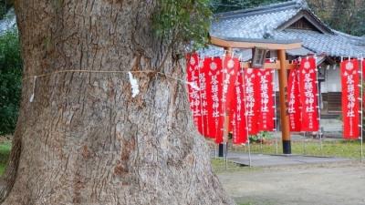 kanonji20180102 (14)