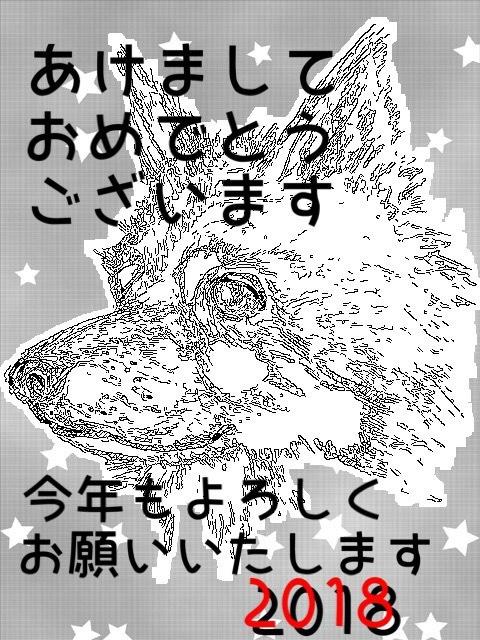 IMG_1041.jpg