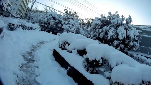 Latte583_05.jpg