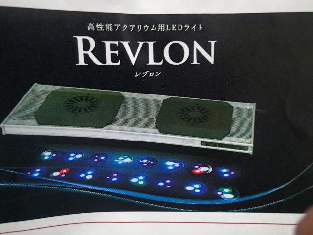 P1240006.jpg