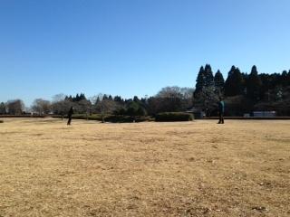 昭和の森ブーメラン