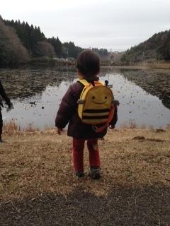 昭和の森池