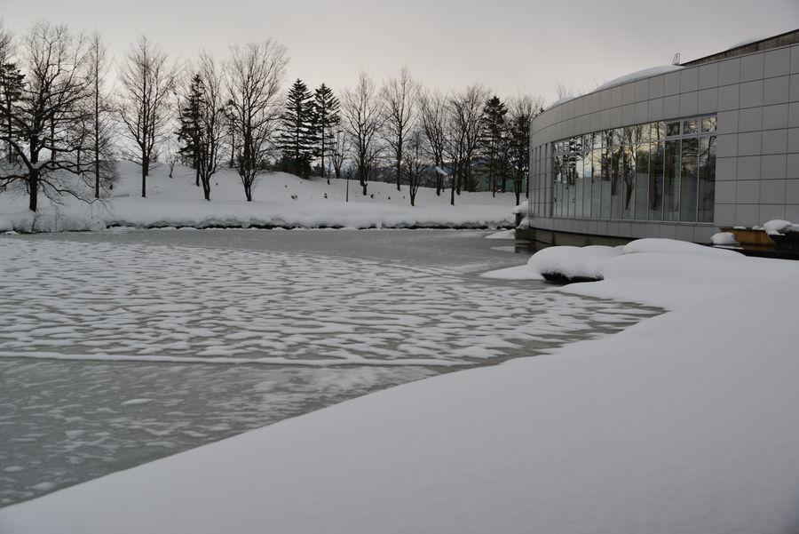 池の雪-1