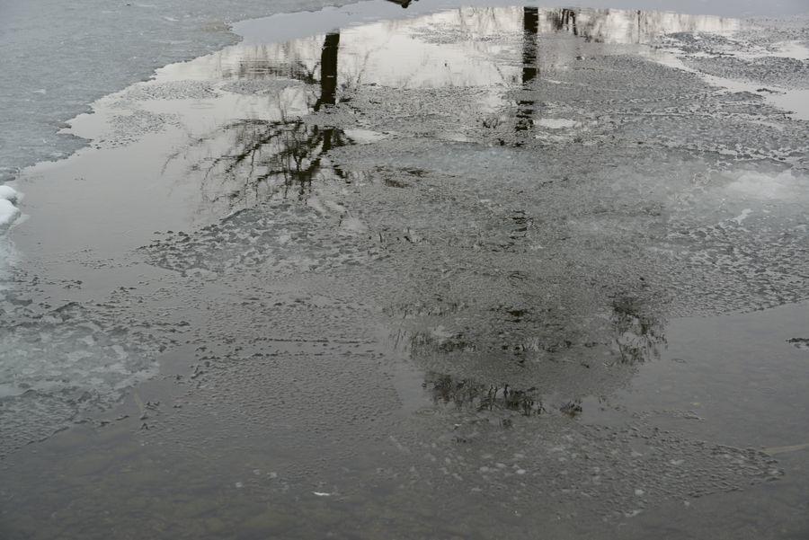 池の雪-6