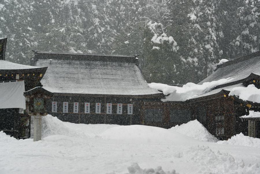 大雪の弥彦神社-6