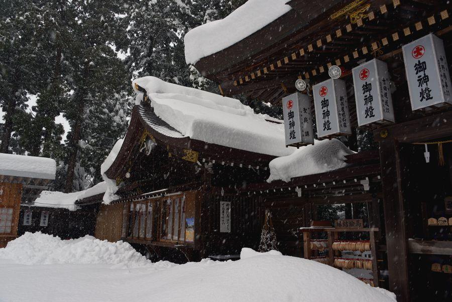 大雪の弥彦神社-7