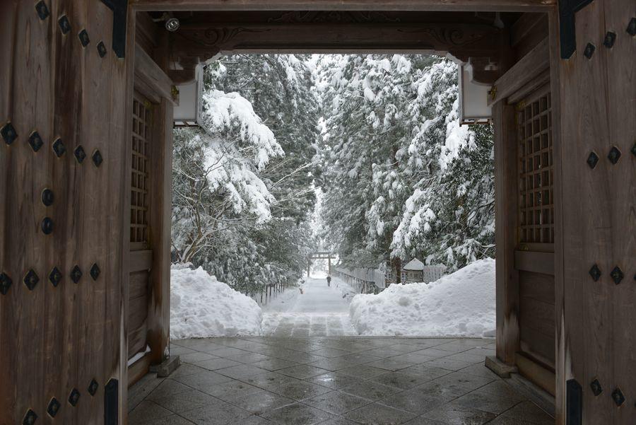 雪の弥彦神社-5