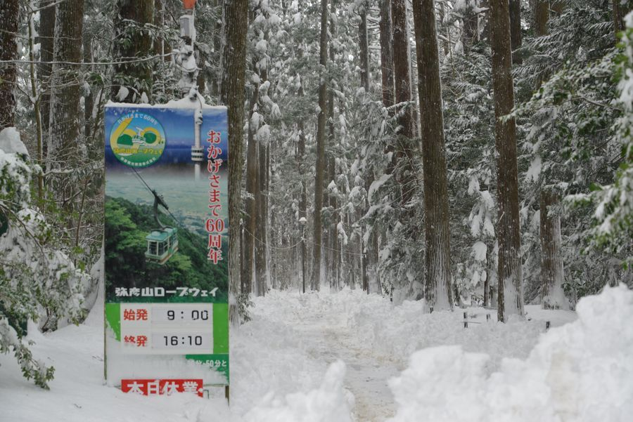 雪の弥彦神社-9