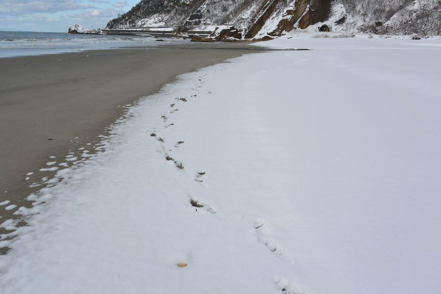 雪の海岸-6