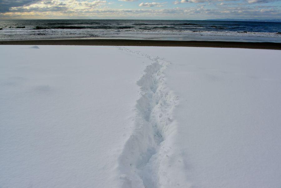 雪の海岸へ-6
