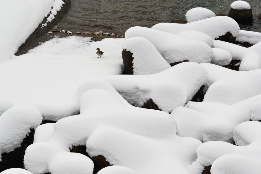 雪の堰-4