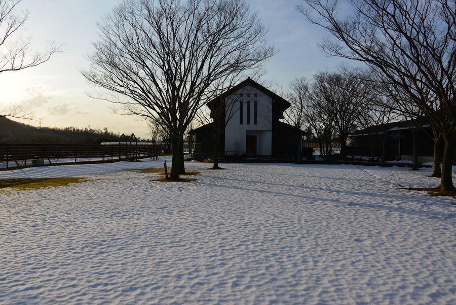 雪のカーブドッチ-1