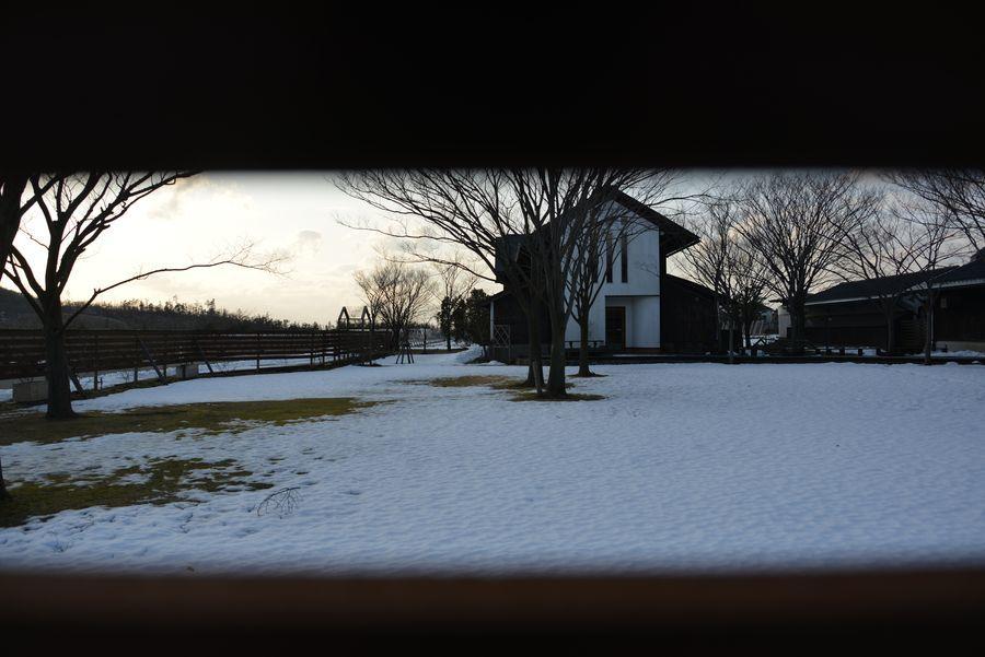 雪のカーブドッチ-2
