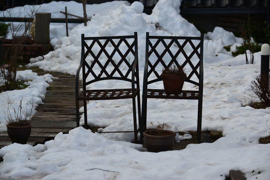 雪のカーブドッチ-4