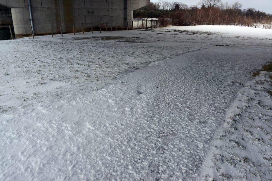 雪の中で-2