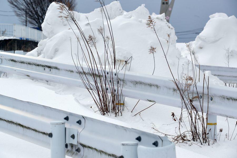 雪の中で-5