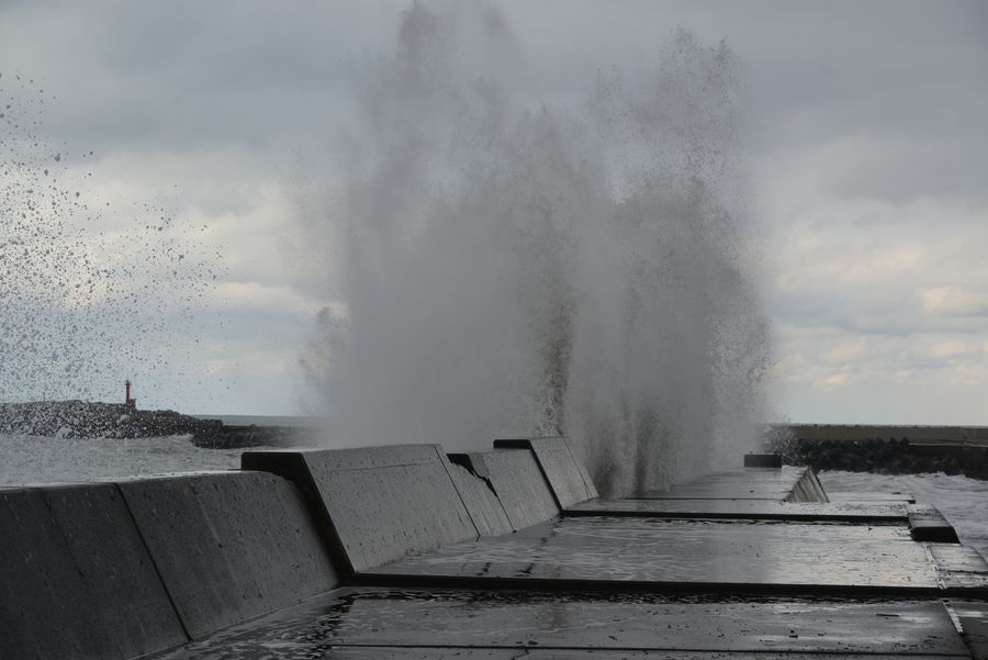 防波堤に打ち上がる-4