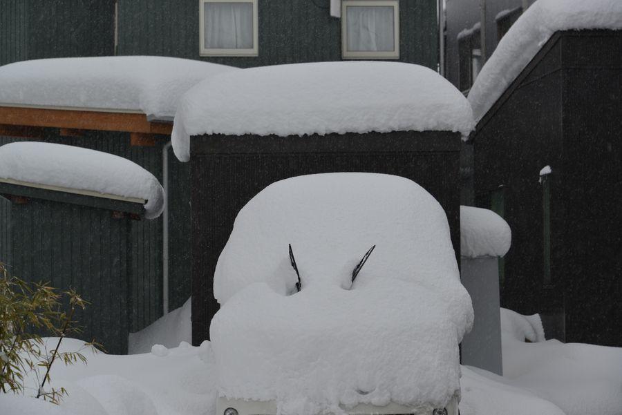 大雪だっ-1