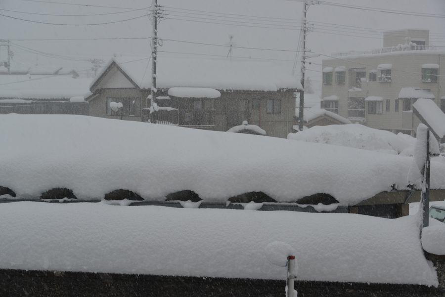 大雪だっ-2