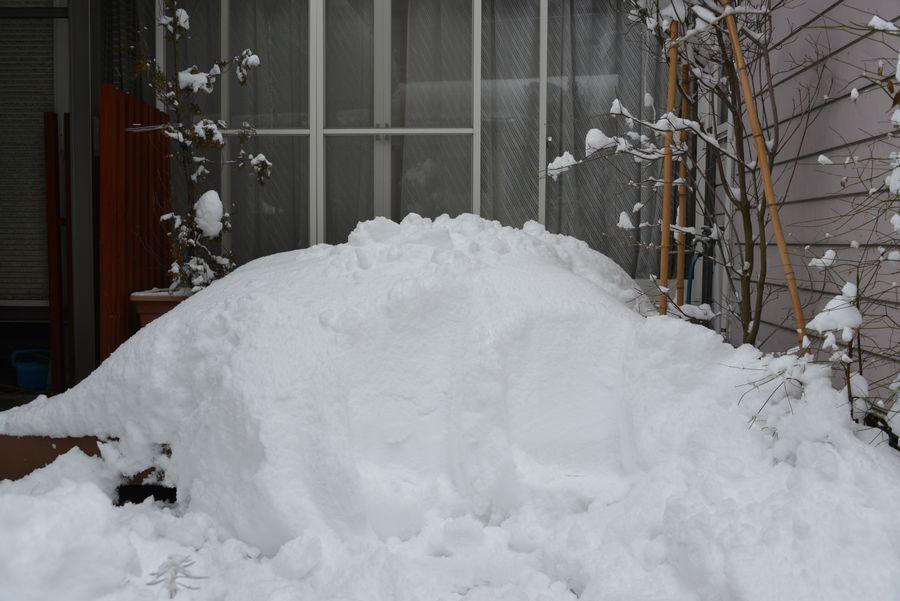 大雪だっ-5