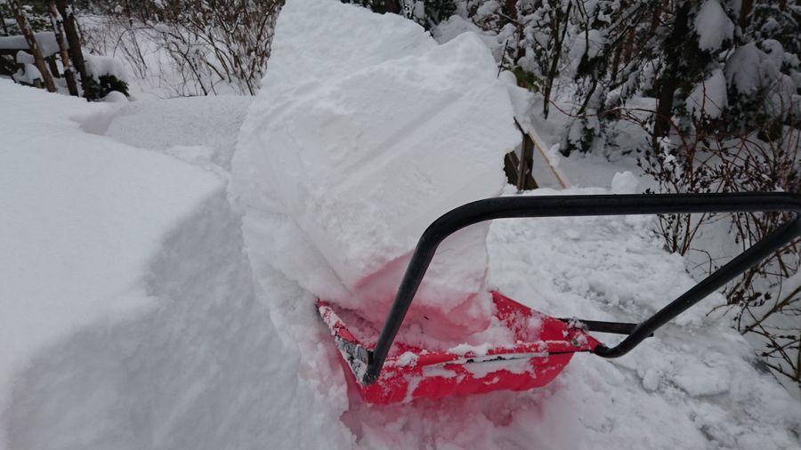雪降ろし-3