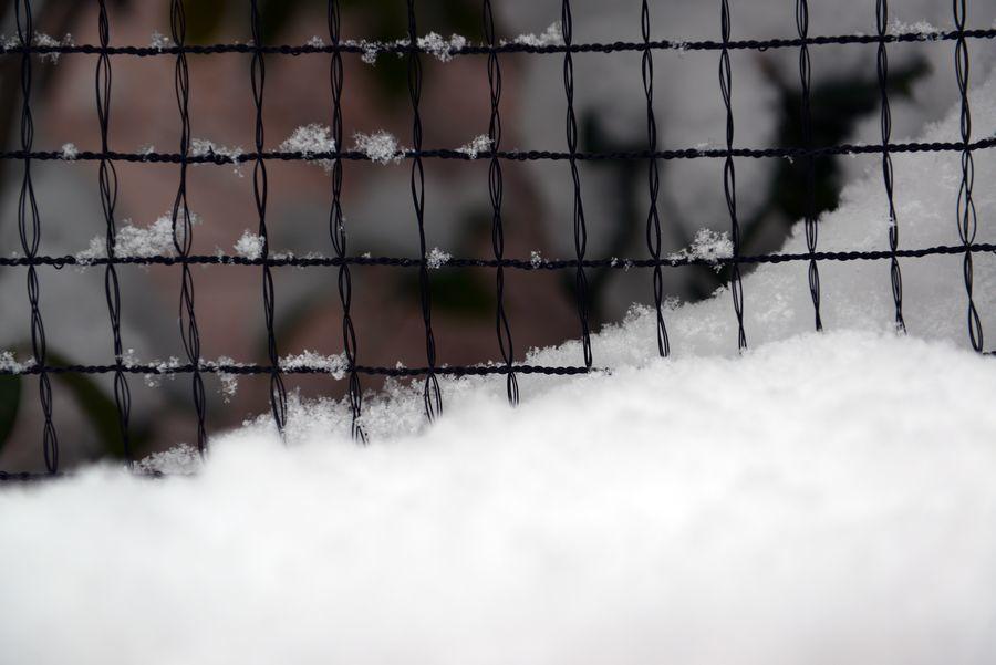 雪は積もる-3