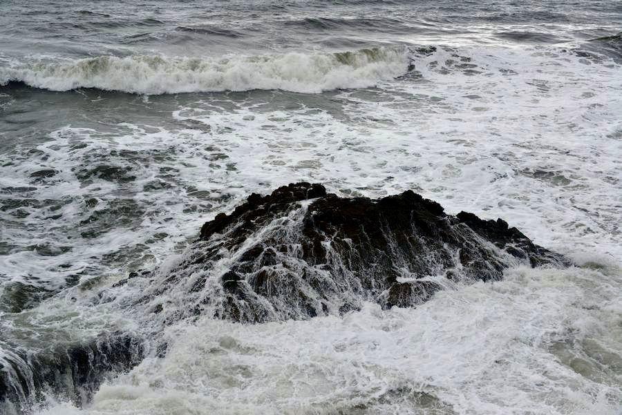 岩を覆う-3