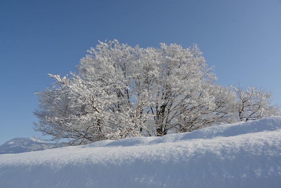 冬の関越を走る-4