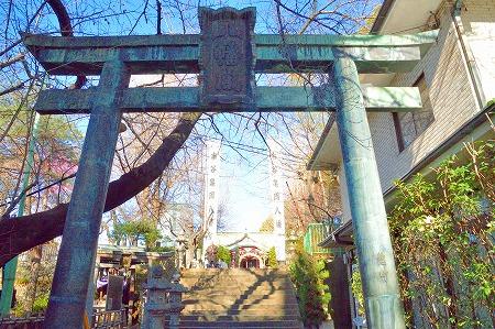 DSC_亀岡0328_01