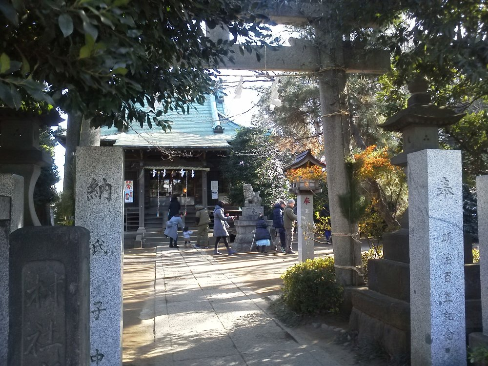 F1000141野火止氷川神社201801031230