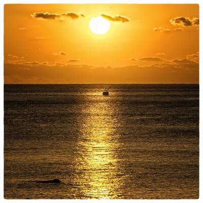 白浜の朝日