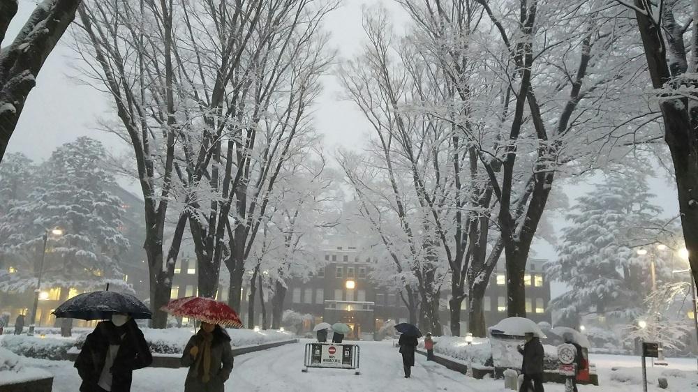 成蹊の雪景色