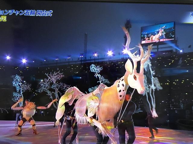 平昌オリンピック 鹿