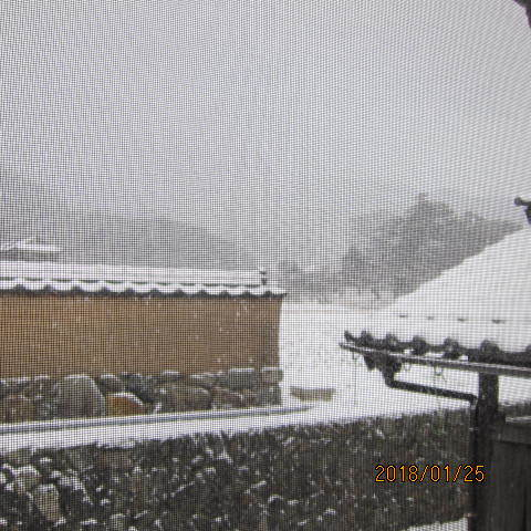 引き続きの雪景色