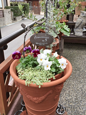gardening365