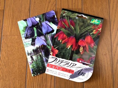 gardening381