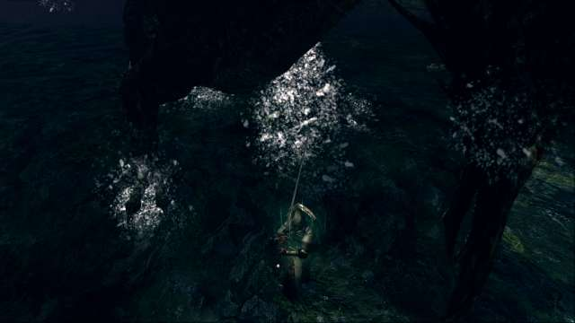 PC 版 DARK SOULS with ARTORIAS OF THE ABYSS EDITION(Prepare To Die Edition) DSfix スクリーンショット、エリア 王家の森庭(Royal Wood) 黒竜カラミット 撃破