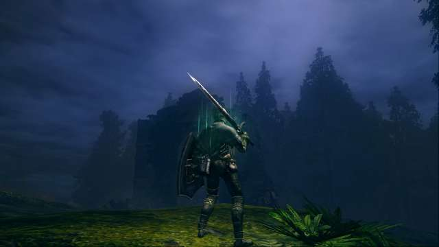 PC 版 DARK SOULS with ARTORIAS OF THE ABYSS EDITION(Prepare To Die Edition) DSfix スクリーンショット、エリア 黒い森の庭(Darkroot Garden)