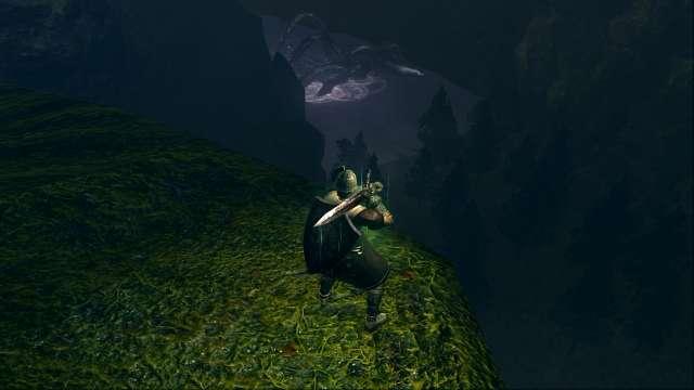 PC 版 DARK SOULS with ARTORIAS OF THE ABYSS EDITION(Prepare To Die Edition) DSfix スクリーンショット、エリア 黒い森の庭(Darkroot Garden) 崖から見える狭間の森(Dark Root Basin)の湖獣(ヒュドラ)