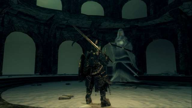 PC 版 DARK SOULS with ARTORIAS OF THE ABYSS EDITION(Prepare To Die Edition) DSfix スクリーンショット、エリア エレーミアス絵画世界(Painted-World Ariamis) エリアボス 半竜プリシラ 敵対前